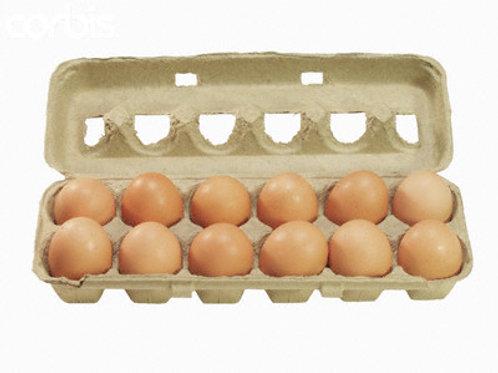 Free Range Non-GMO Eggs (dozen) - Maple Shade Gardens (Bernard Loewins)