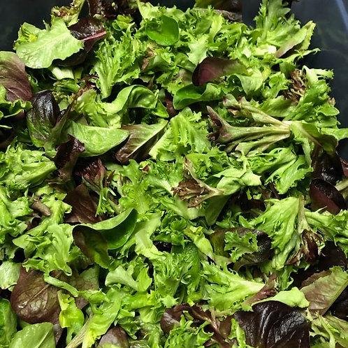 Salad Mix (5 oz bag) - Riverview Herbs