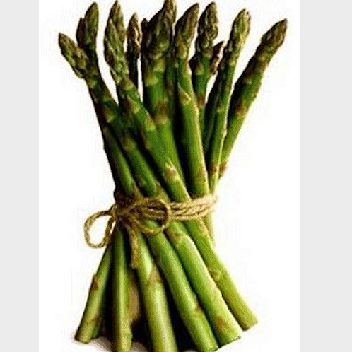 Asparagus - Fresh and Local - 1 lb bag - Oxford Asparagus Farm