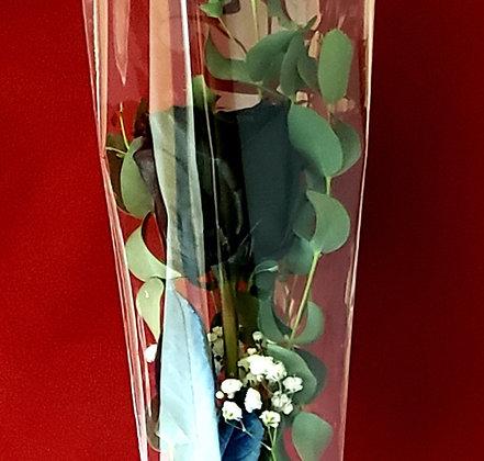 Single Black Rose Bouquet