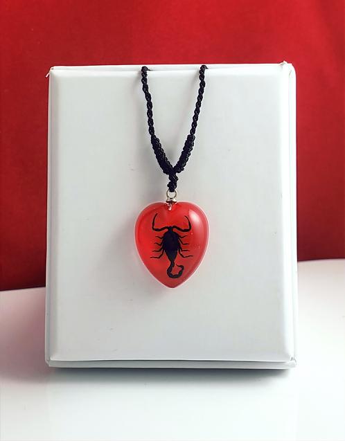 Scorpion noir - Coeur rouge