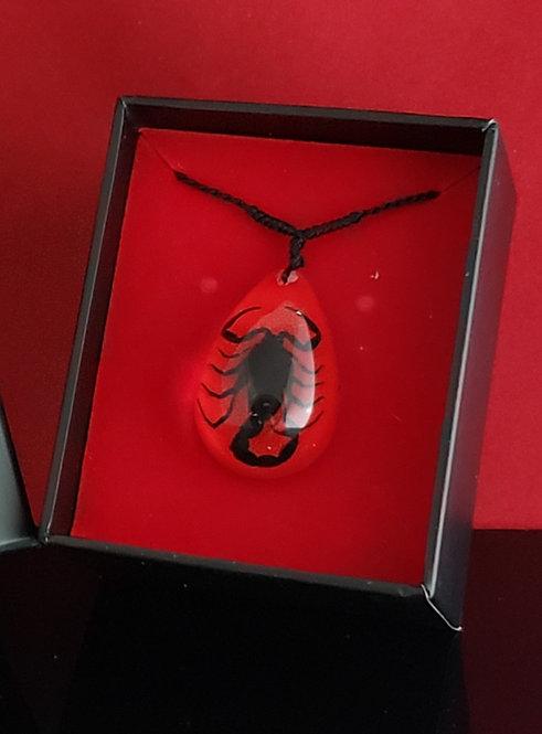 Small Black Scorpion Red Tear Drop