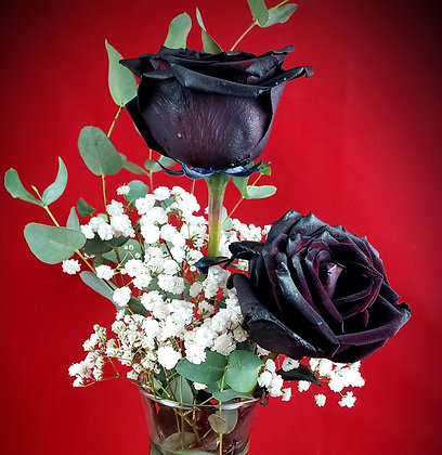 Double Black Roses w/Vase