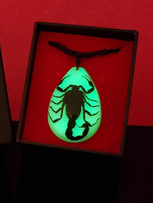 Scorpion Tear Drop Glow dans le noir - Grand
