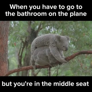 Let's agree right now that the middle seat on a plane is not coming back