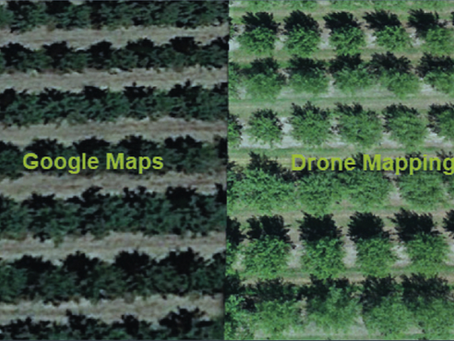 Use of E-Discovery and Drone Site Re-creation in a Crop-Loss Case
