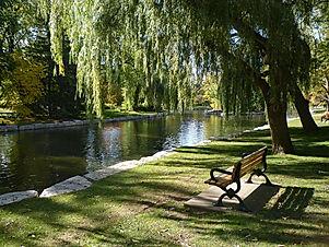 1200px-Victoria_Park_bench.jpg