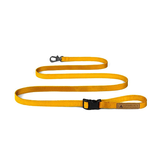 Easy Leash In Yellow