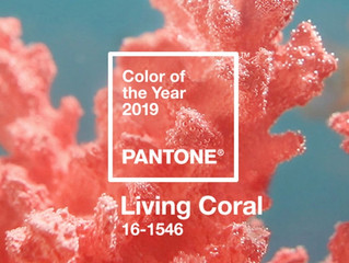 Colors of the Year 2019!