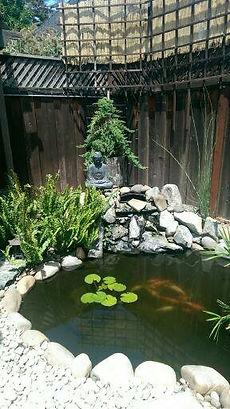 backyard remodel koi pond