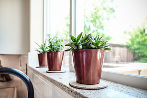 copper succulents white kitchen