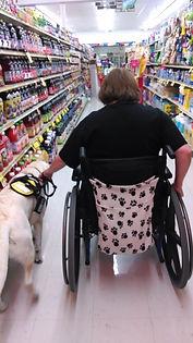 Service Dog Arazi.jpg