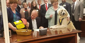 Wyoming has new Service Dog Laws