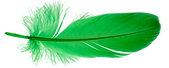 DG GReen Feather.png