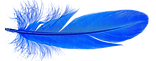 DG Blue Feather.png