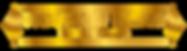 HHSD transparent logo 2.png