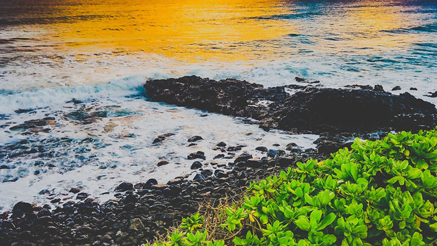 hawaii_beach.jpg