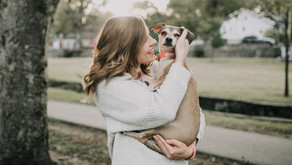 Chronicling Your Pet's Life With StoryCombs