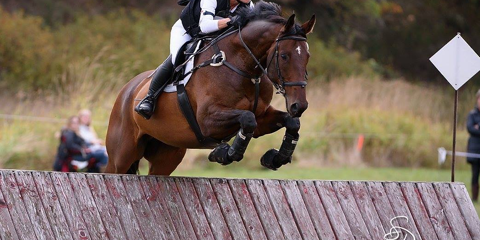 Eventing Clinic with Maeve Drew -     2 days $ 185
