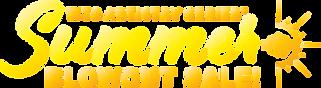 Summer Blowout Sale 2021 - logo-01.png