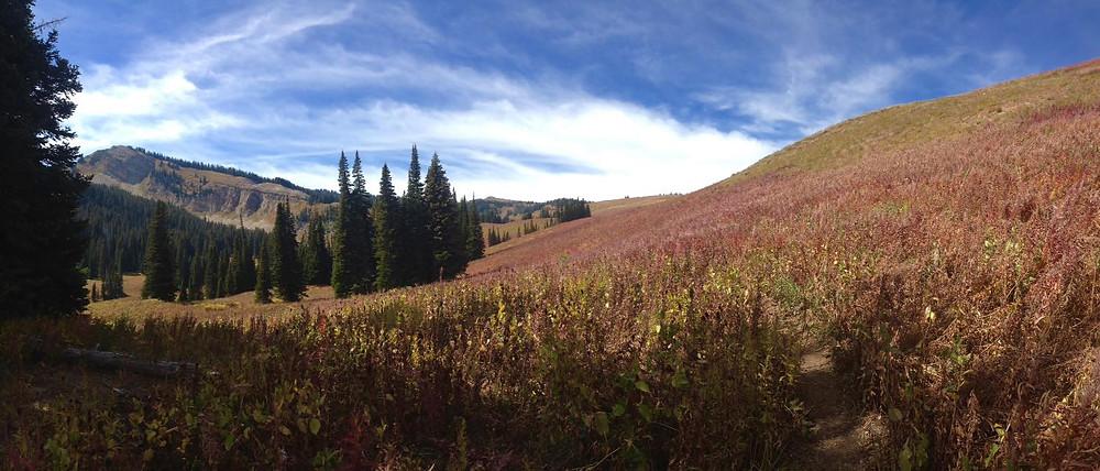 In the Teton mountains