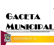 GACETA MUNICIPAL_edited.png