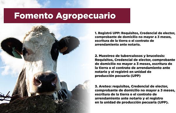 banner fomento agropecuario-01.jpg