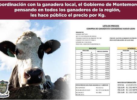 Precios por KG de compra de ganado 09/09/2020