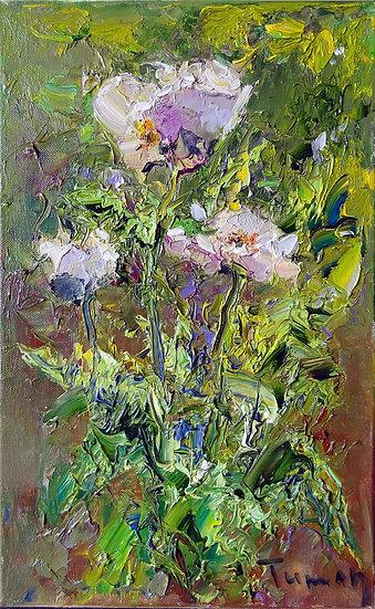 Туман Жумабаев \ Tuman Zhumabaev - Белые маки \ White poppy flowers