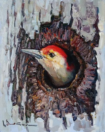 Иван Витюк \ Ivan Vityuk – Дятел \ Woodpecker