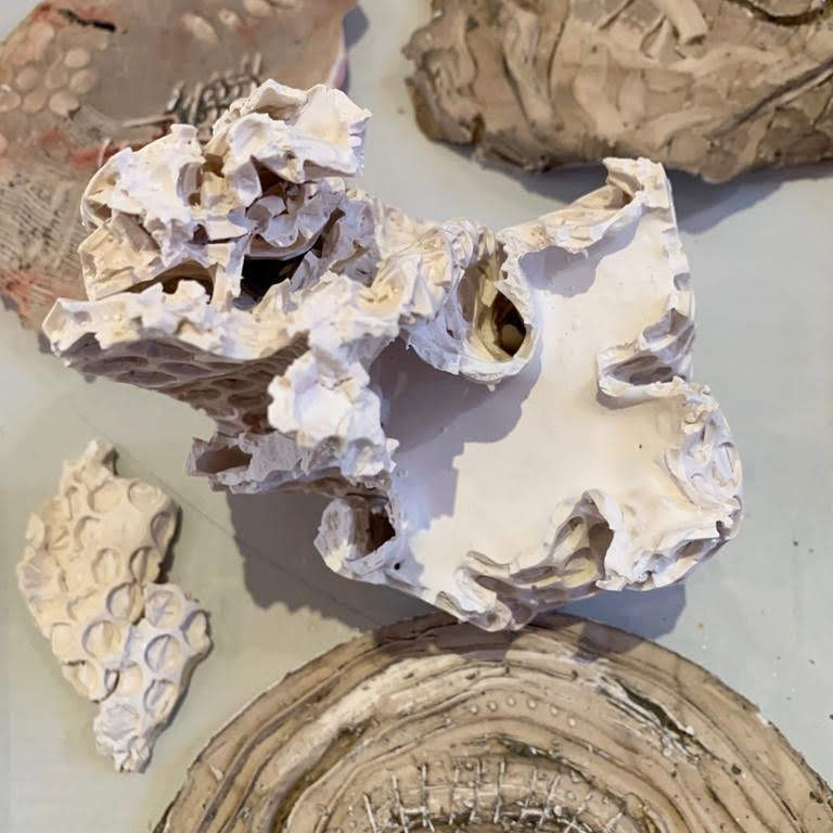Experimental Plaster Casting