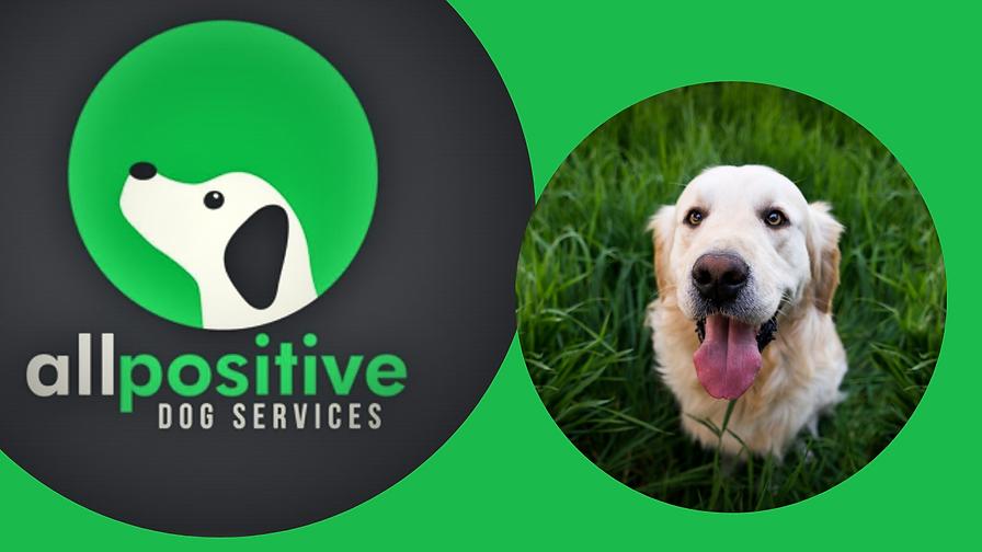 Dog Nail It Masterclasses Herefordshire