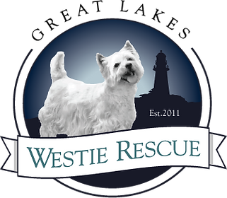 Great Lakes Westie Rescue Inc.