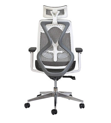 MISURAA Xenon High Back Ergonomic Chair