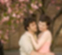 Kirschblüten-Liebe