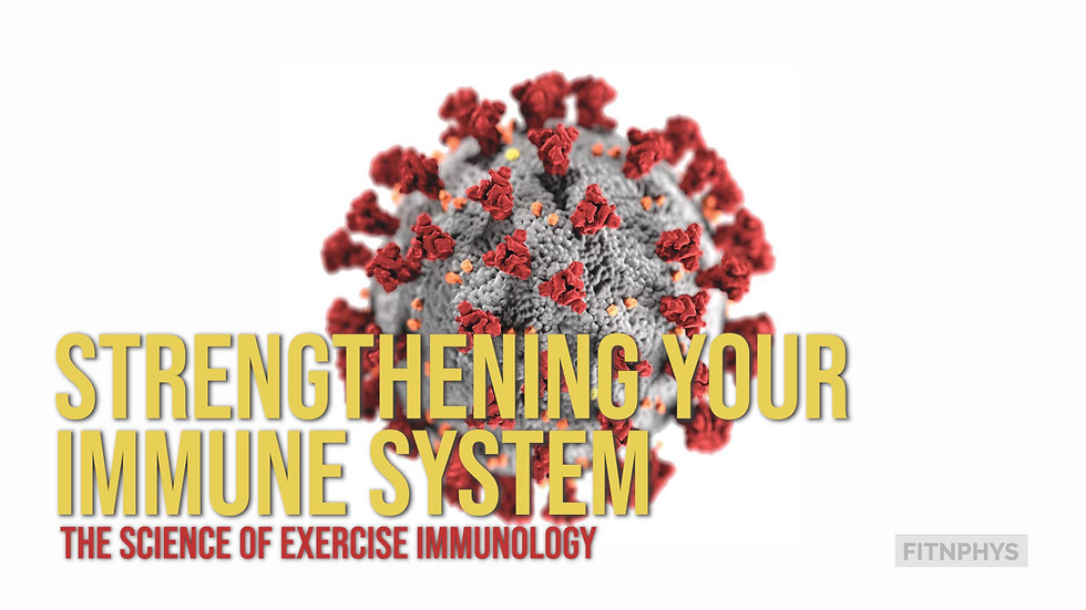 Strengthening Your Immune System