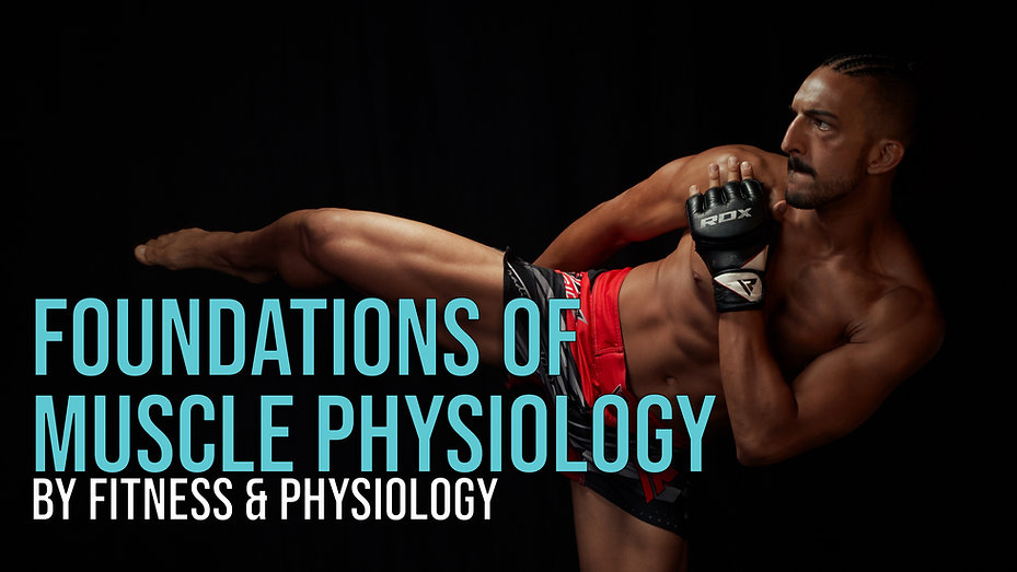 Muscle Phys cover.jpg