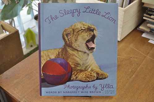 THE SLEEPY LITTLE LION,ねむたがりやの子ライオン,イーラ,ワイズブラウン,古書,古本,千葉,佐倉,,京成佐倉アベイユブックス