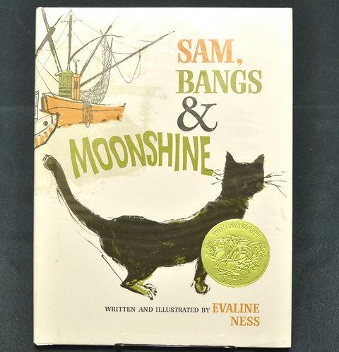Sam Bangs and Moonshine,へんてこりんなサムとねこ,Evaline Ness,エヴァリン・ネス,古書,古本,千葉,佐倉,京成佐倉,アベイユブックス
