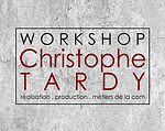 logo Christophe Tardy formation small.jp