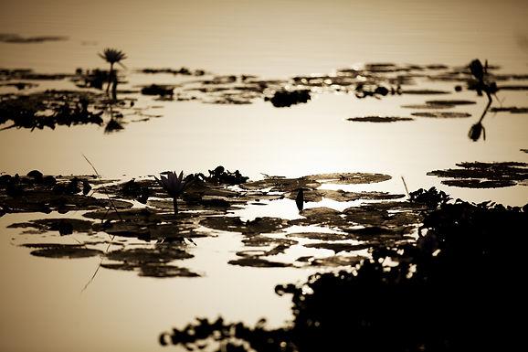 Photos de paysages d'Afrique et d'ailleurs photographiés par Christophe Tardy