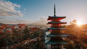 samurai zurich 1.jpg