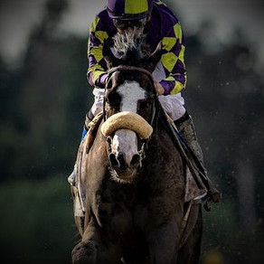 2020 Kentucky Derby Analysis