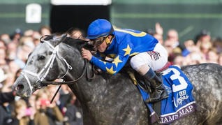 The Breeders Cup Dirt Mile Handicapping Dilemma