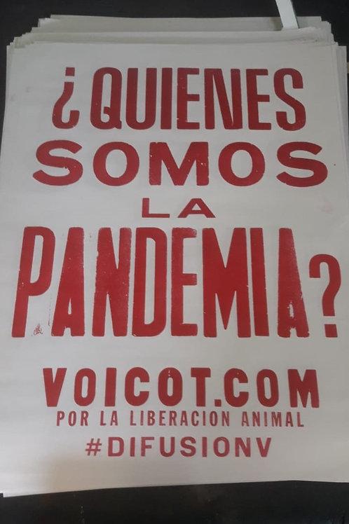 Afiche - Edición Pandemia
