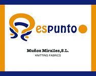 Logo ESPUNTO.jpg