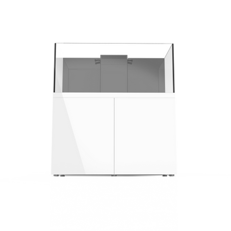 ProStar 110 White 4.png
