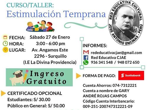CURSO TALLER: ESTIMULACIÓN TEMPRANA Y EL ENFOQUE DIT