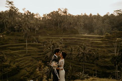 Tegalalang Ricefield-3.jpg