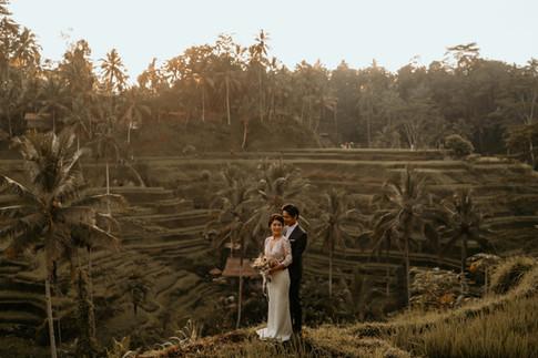 Tegalalang Ricefield-21.jpg